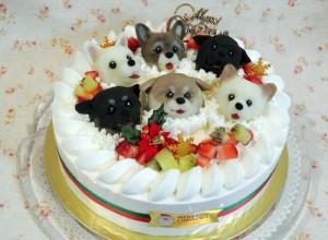 志村どうぶつ園ケーキ