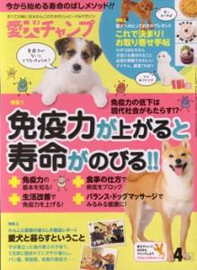 愛犬チャンプ4月号